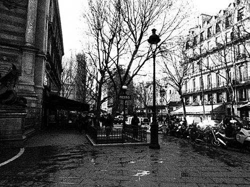 paris, littérature, société, livres, politique, paris capitale, hidalgo, amaury watremez