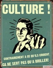 politique, culture, ignares, littérature, confort intellectuel