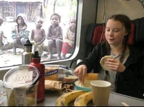 Greta Thunberg, bourgeois pédagogues, nantis, amaury watremez, davos
