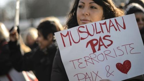 France, politique, société, nation, hypocrisie, inculture, paresse, vieux pays, islam, enquête Montaigne, amaury watremez