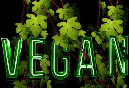 vegans, société, politique, alimentation, amaury watremez