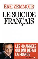 Zemmour, politique, histoire, France, amaury watremez