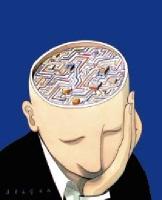 cerveau, intelligence, éducation, société, politique, amaury watremez, école, éducation