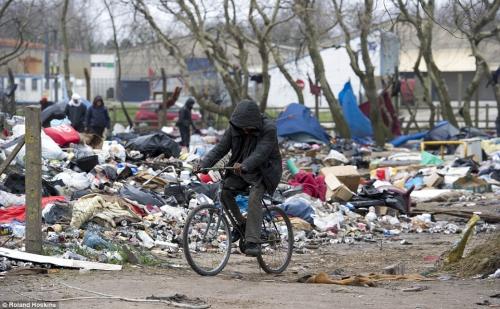 politique, migrants, société, calais, jungle, amaury watremez